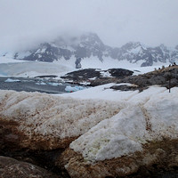 Port Lockroy_Antarctica_Jan2015_ 007