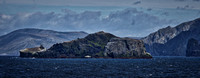 Cape Horn_Chile_Jan2015_ 014